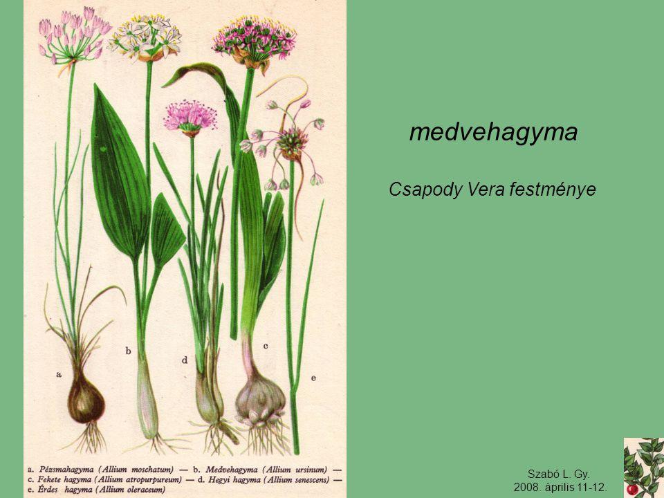 Csapody Vera festménye