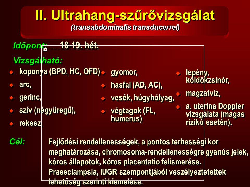 II. Ultrahang-szűrővizsgálat (transabdominalis transducerrel)