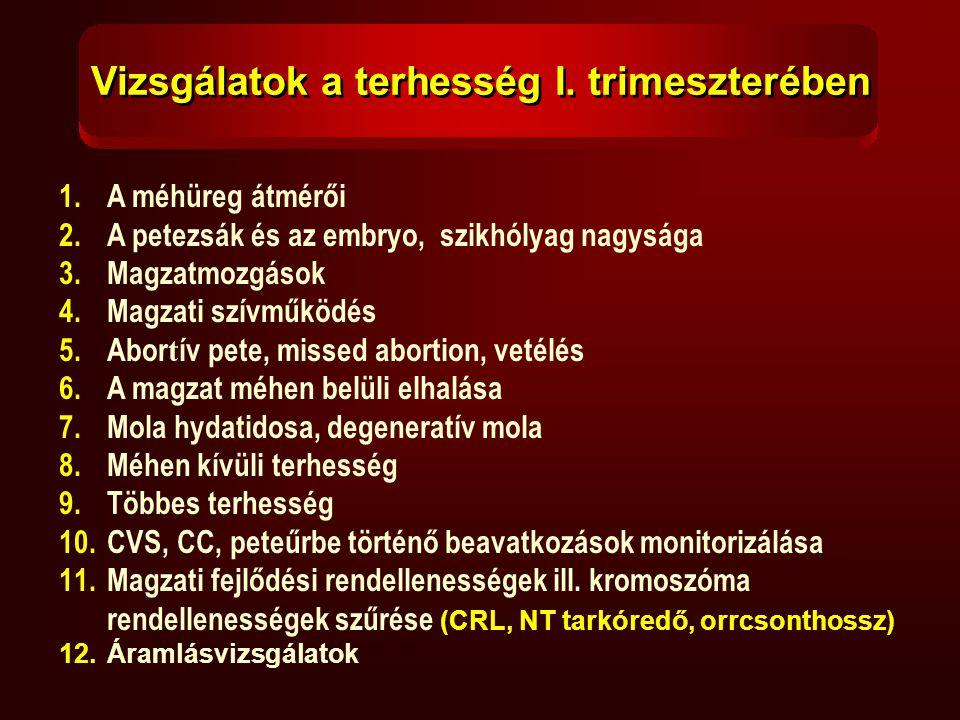 Vizsgálatok a terhesség I. trimeszterében