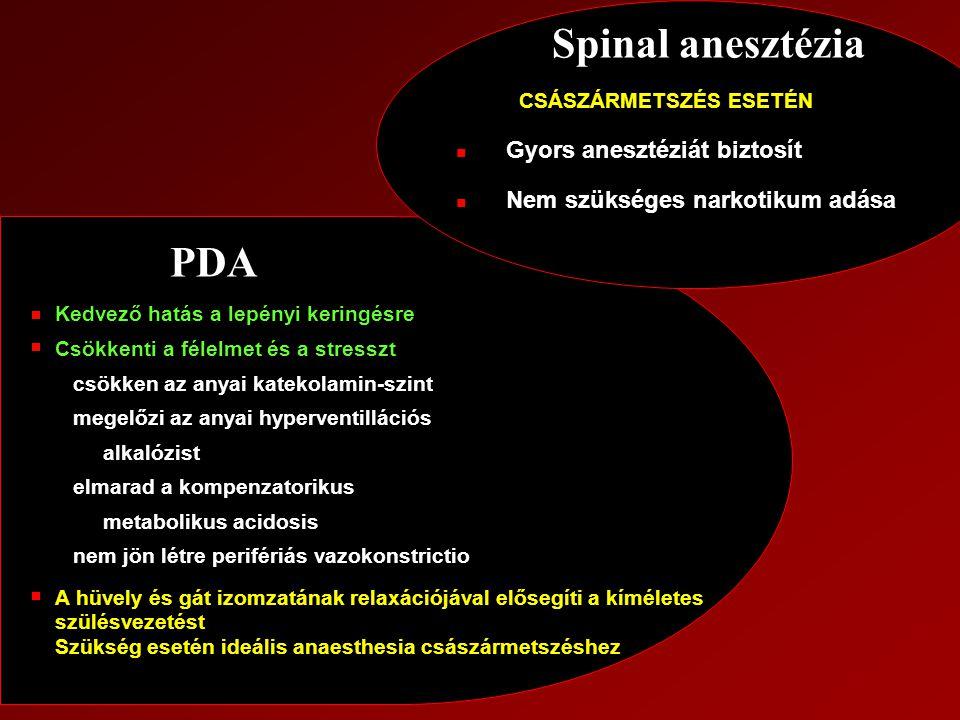 Spinal anesztézia PDA CSÁSZÁRMETSZÉS ESETÉN Gyors anesztéziát biztosít
