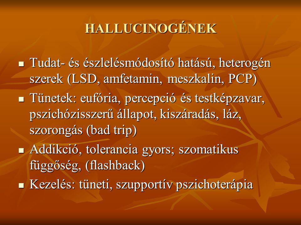 HALLUCINOGÉNEK Tudat- és észlelésmódosító hatású, heterogén szerek (LSD, amfetamin, meszkalin, PCP)