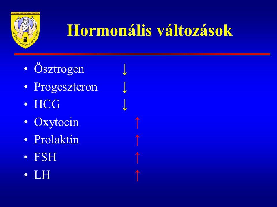 Hormonális változások