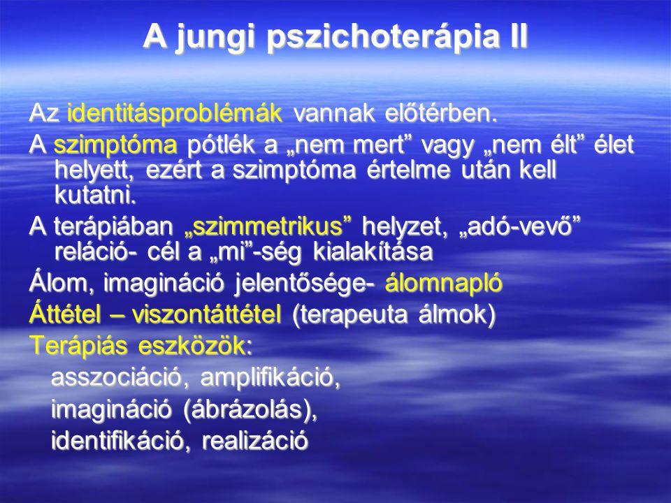 A jungi pszichoterápia II