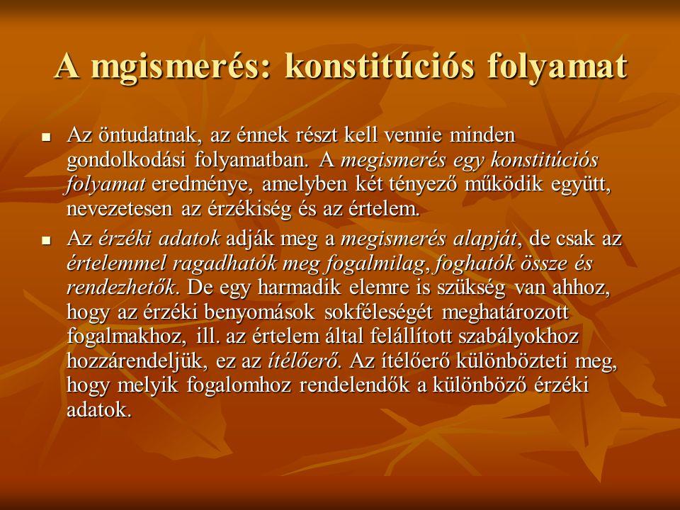 A mgismerés: konstitúciós folyamat