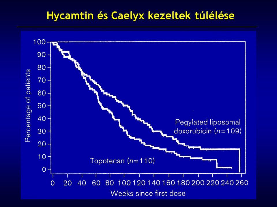 Hycamtin és Caelyx kezeltek túlélése