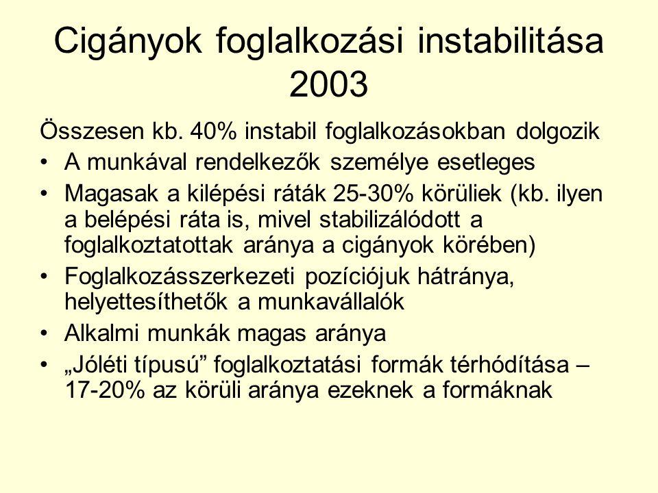 Cigányok foglalkozási instabilitása 2003