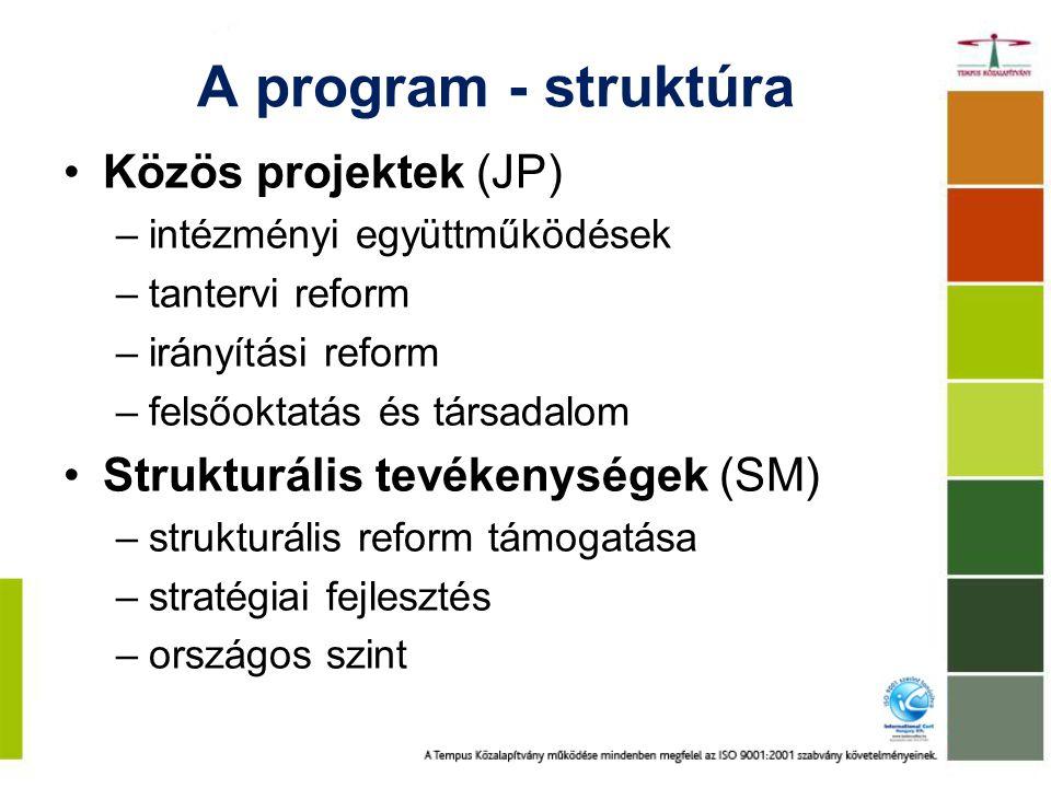 A program - struktúra Közös projektek (JP)