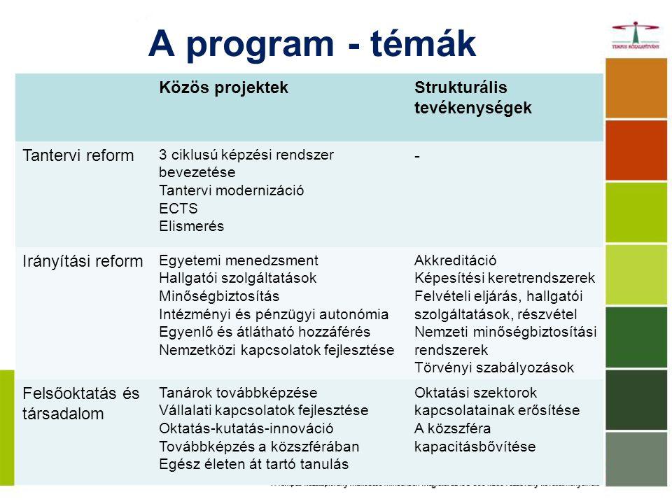 A program - témák Közös projektek Strukturális tevékenységek