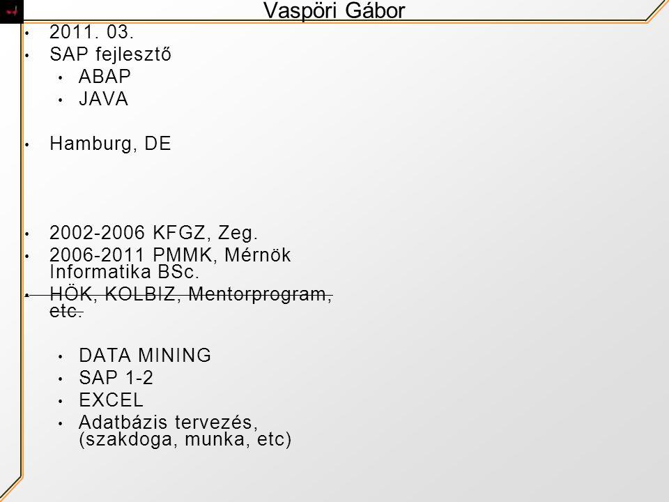 Vaspöri Gábor 2011. 03. SAP fejlesztő ABAP JAVA Hamburg, DE