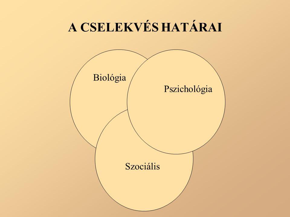 A CSELEKVÉS HATÁRAI Biológia Pszichológia Szociális