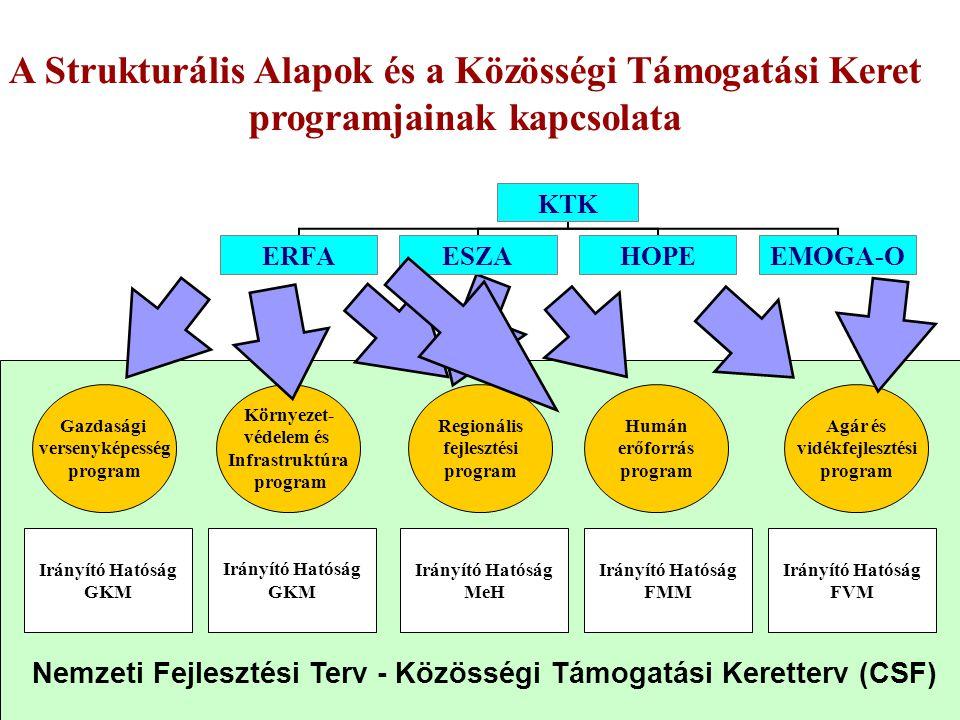 A Strukturális Alapok és a Közösségi Támogatási Keret