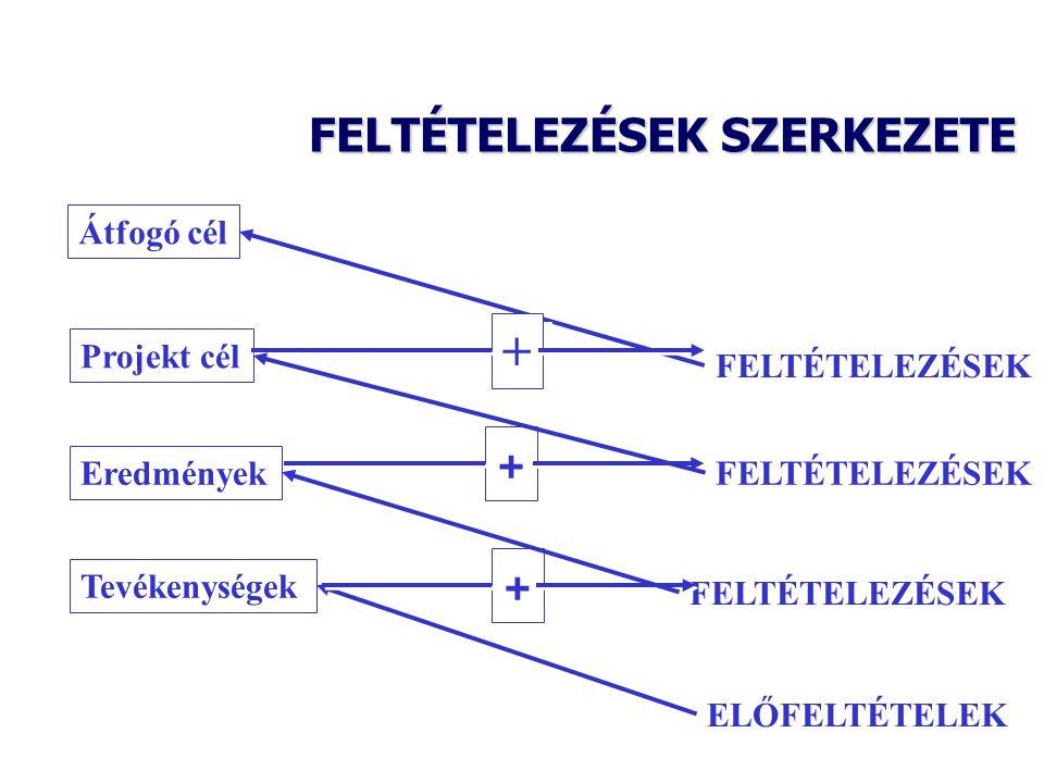 FELTÉTELEZÉSEK SZERKEZETE