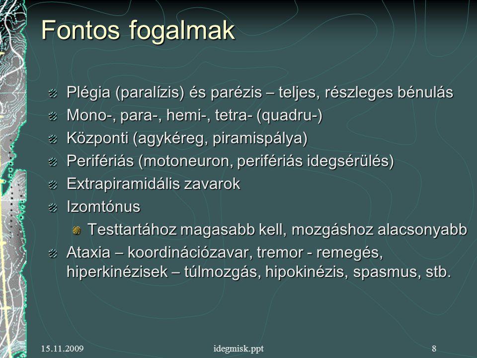 Fontos fogalmak Plégia (paralízis) és parézis – teljes, részleges bénulás. Mono-, para-, hemi-, tetra- (quadru-)