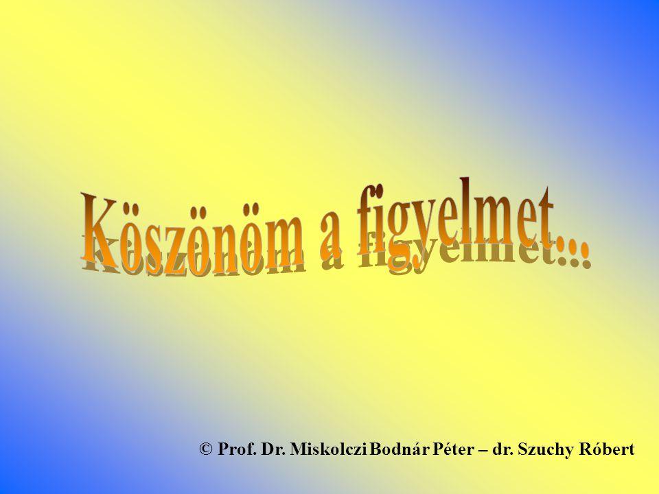 Köszönöm a figyelmet... © Prof. Dr. Miskolczi Bodnár Péter – dr. Szuchy Róbert