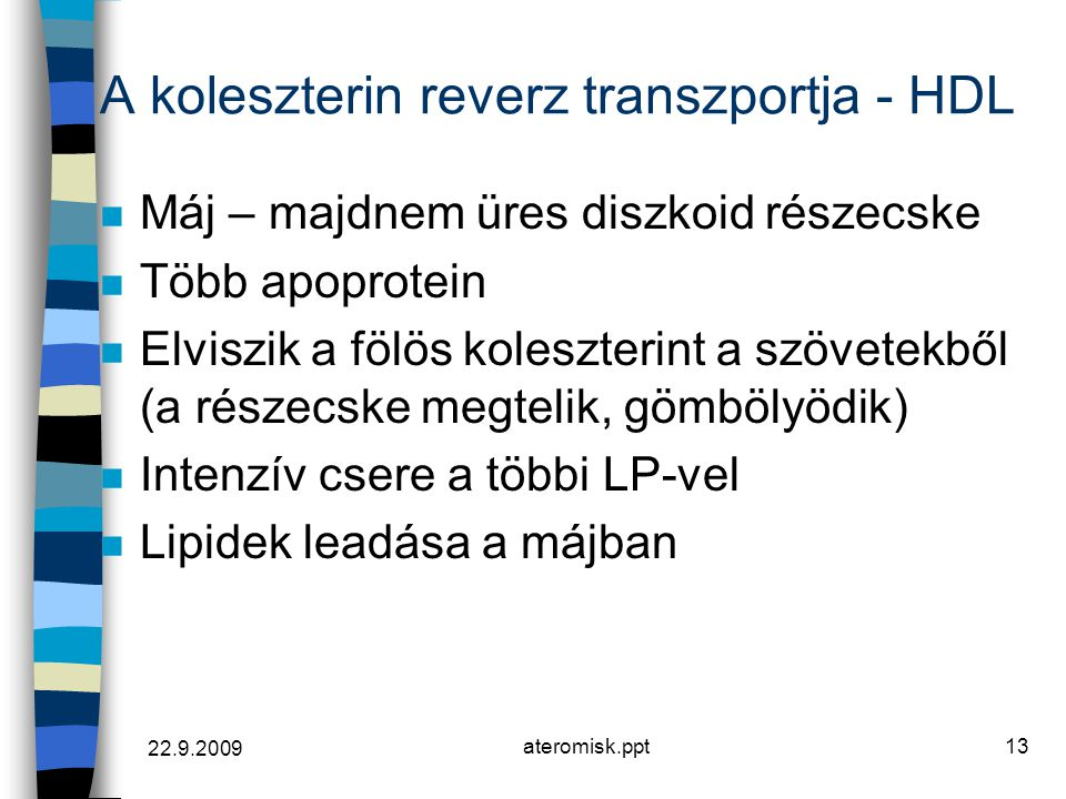 A koleszterin reverz transzportja - HDL