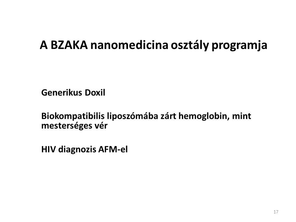 A BZAKA nanomedicina osztály programja