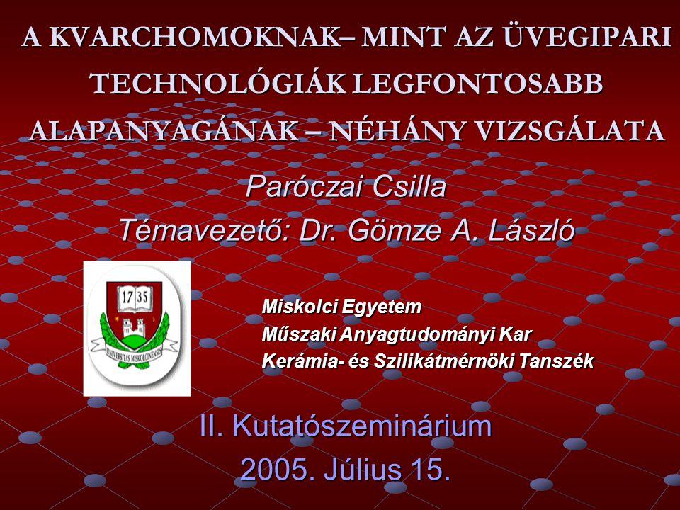 Témavezető: Dr. Gömze A. László