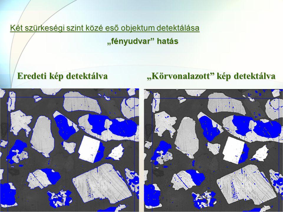 """Eredeti kép detektálva """"Körvonalazott kép detektálva"""