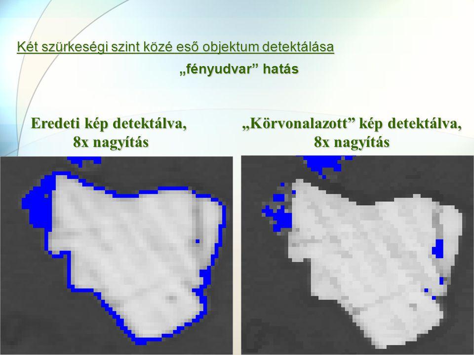 Eredeti kép detektálva, 8x nagyítás