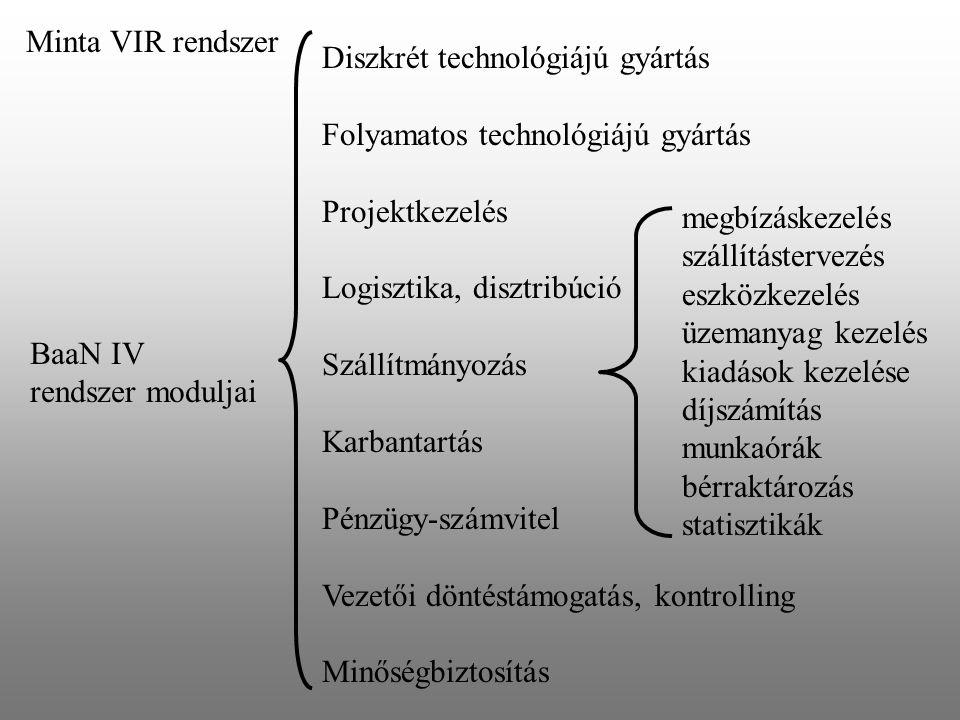 Minta VIR rendszer Diszkrét technológiájú gyártás. Folyamatos technológiájú gyártás. Projektkezelés.