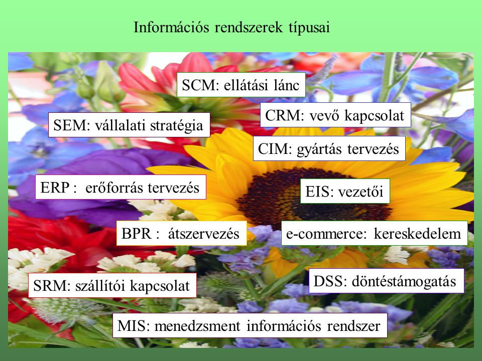 Információs rendszerek típusai