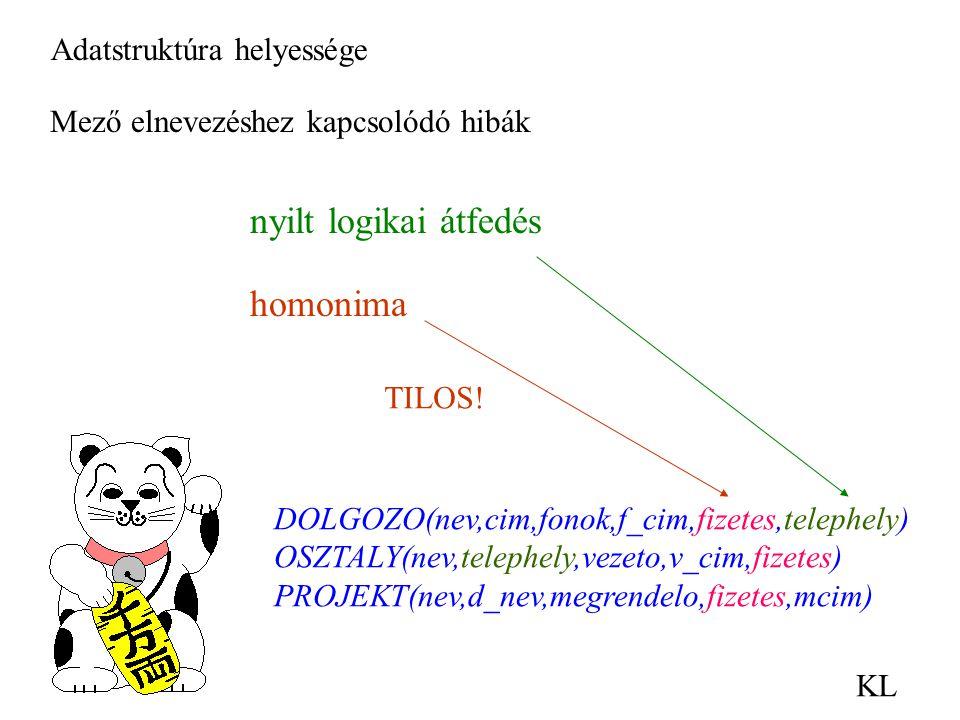 nyilt logikai átfedés homonima Adatstruktúra helyessége