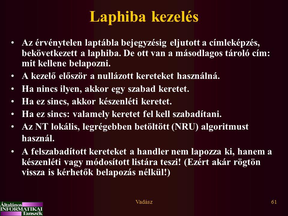 Laphiba kezelés