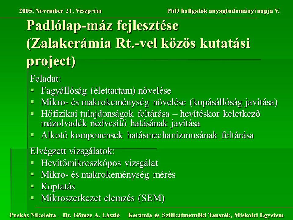 Padlólap-máz fejlesztése (Zalakerámia Rt.-vel közös kutatási project)