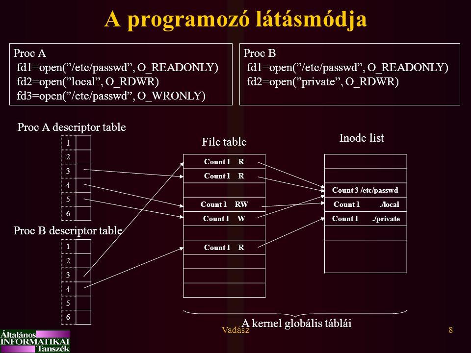 A programozó látásmódja