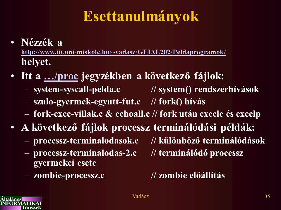 Esettanulmányok Nézzék a http://www.iit.uni-miskolc.hu/~vadasz/GEIAL202/Peldaprogramok/ helyet. Itt a …/proc jegyzékben a következő fájlok: