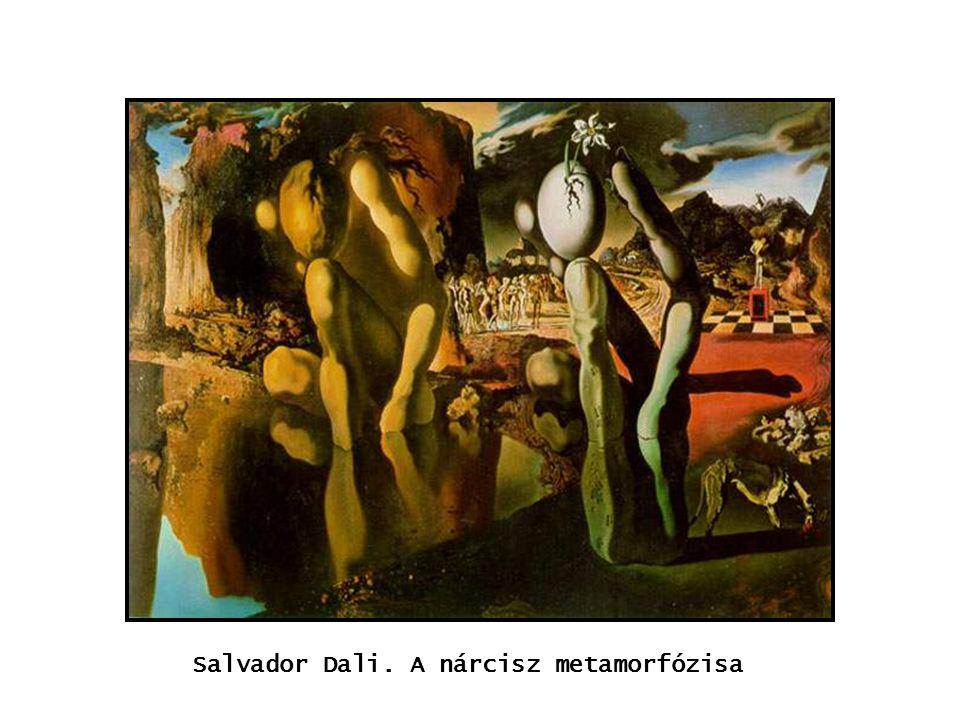 kép Salvador Dali. A nárcisz metamorfózisa