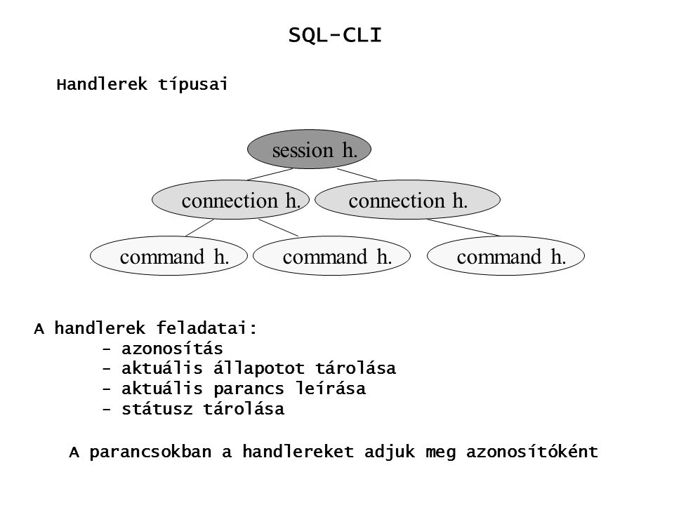 SQL-CLI session h. connection h. connection h. command h. command h.