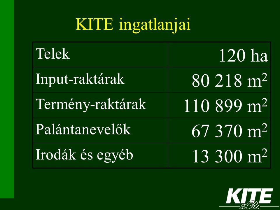 120 ha 80 218 m2 110 899 m2 67 370 m2 13 300 m2 KITE ingatlanjai Telek
