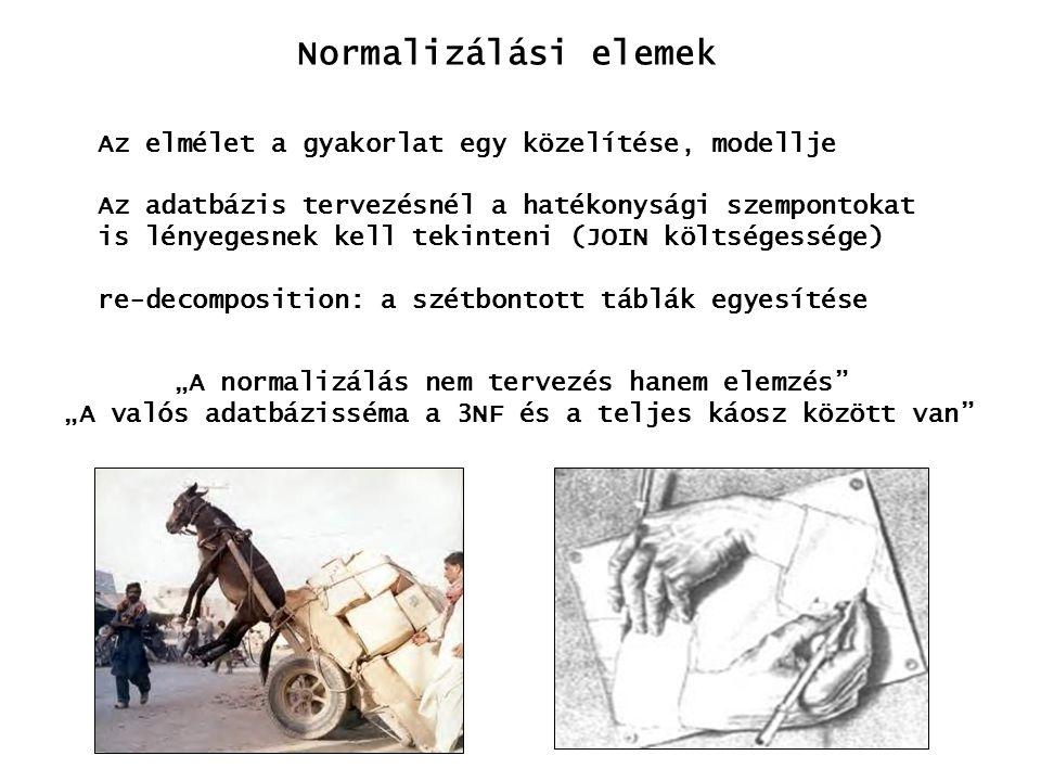 Normalizálási elemek Az elmélet a gyakorlat egy közelítése, modellje