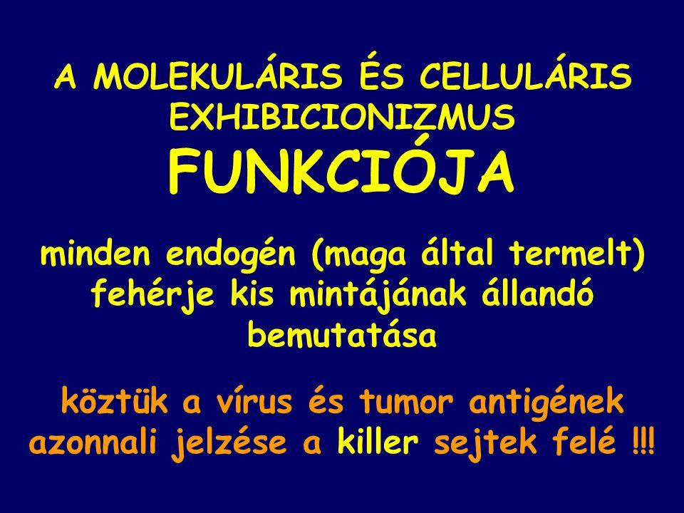FUNKCIÓJA A MOLEKULÁRIS ÉS CELLULÁRIS EXHIBICIONIZMUS