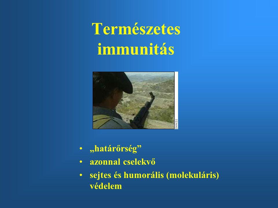 Természetes immunitás