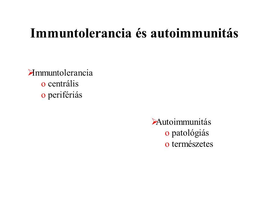 Immuntolerancia és autoimmunitás