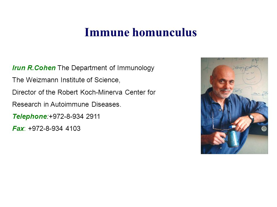 Immune homunculus Irun R.Cohen The Department of Immunology