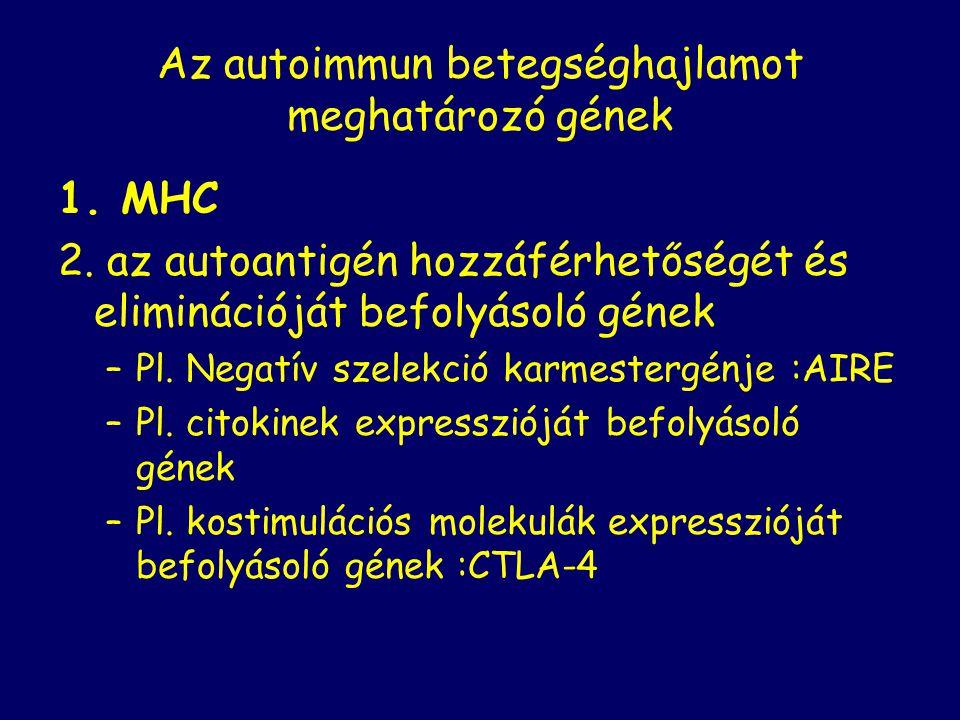 Az autoimmun betegséghajlamot meghatározó gének