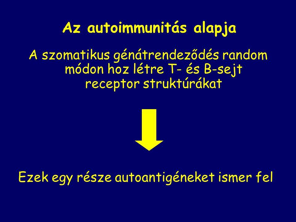 Az autoimmunitás alapja