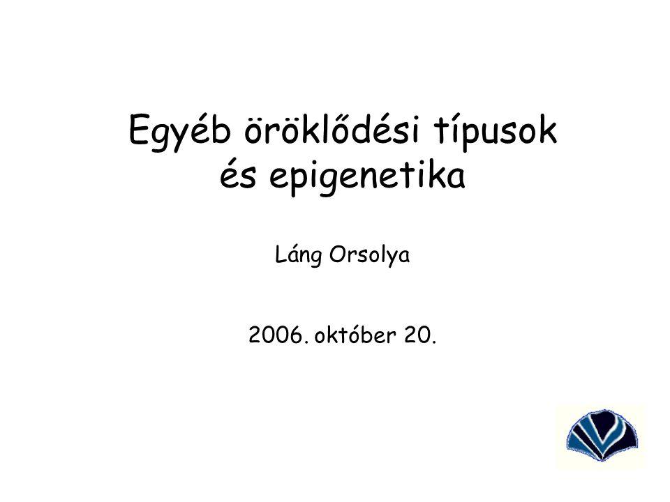 Egyéb öröklődési típusok és epigenetika Láng Orsolya 2006. október 20.