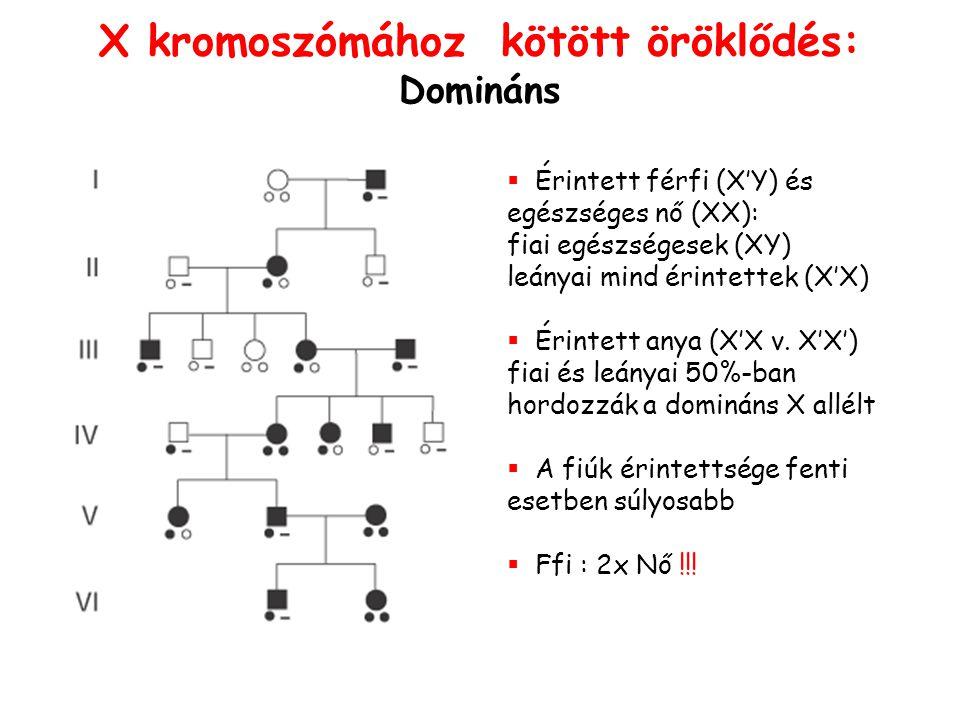 X kromoszómához kötött öröklődés: Domináns