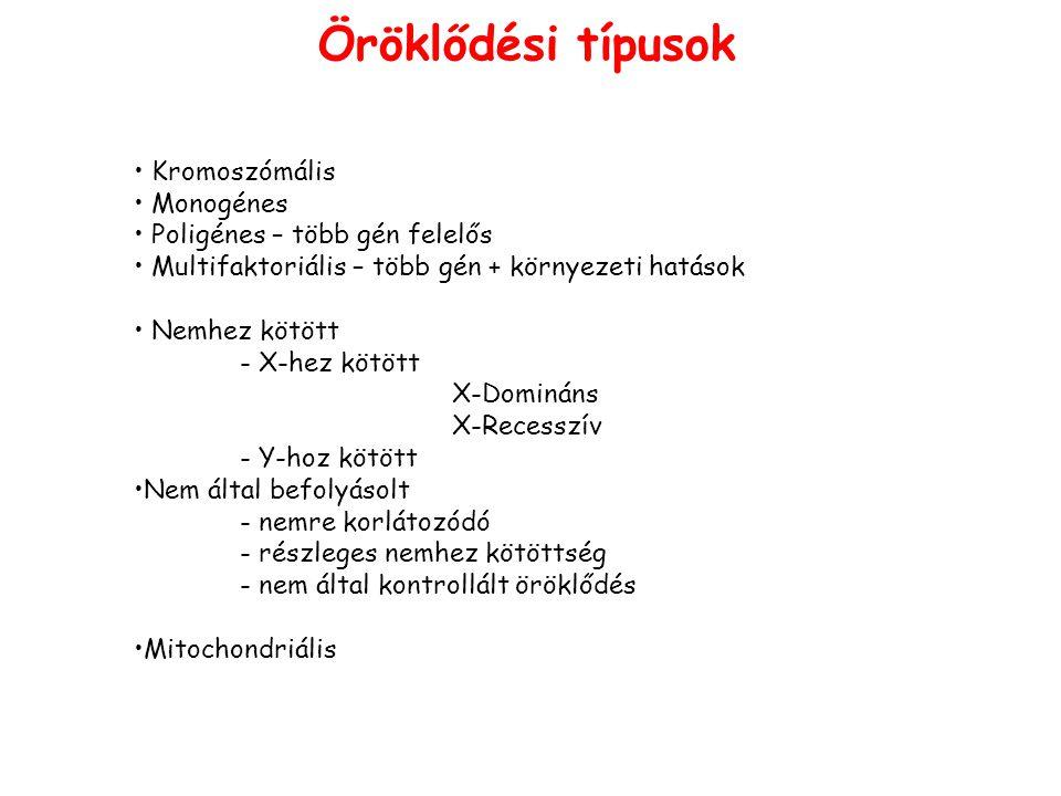 Öröklődési típusok Kromoszómális Monogénes