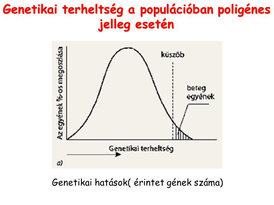 Genetikai terheltség a populációban poligénes