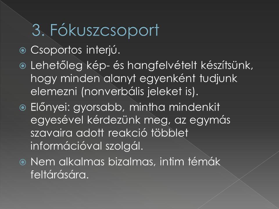 3. Fókuszcsoport Csoportos interjú.