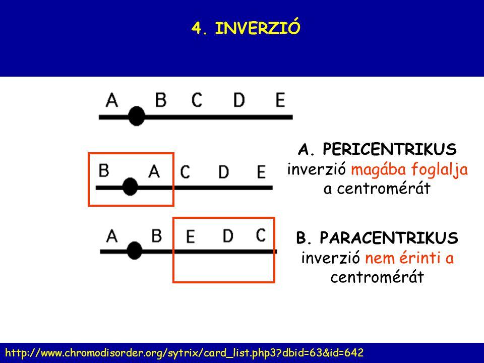 A. PERICENTRIKUS inverzió magába foglalja a centromérát