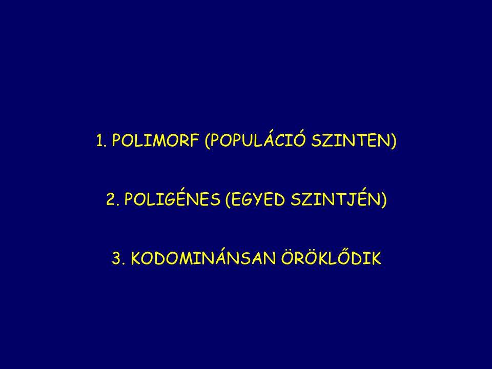 1. POLIMORF (POPULÁCIÓ SZINTEN)