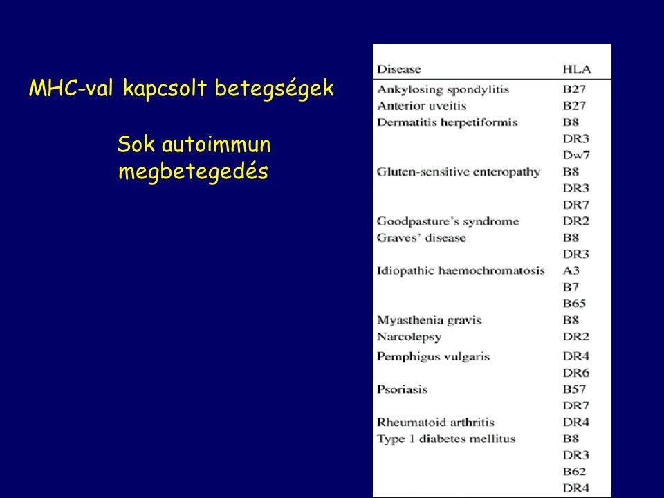MHC-val kapcsolt betegségek