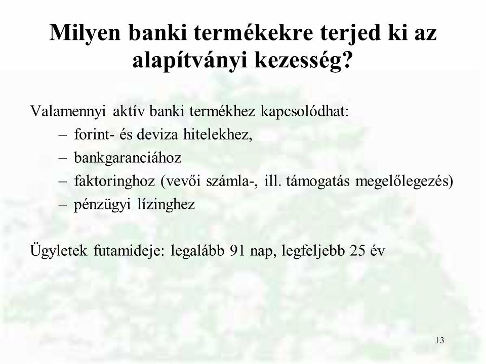 Milyen banki termékekre terjed ki az alapítványi kezesség
