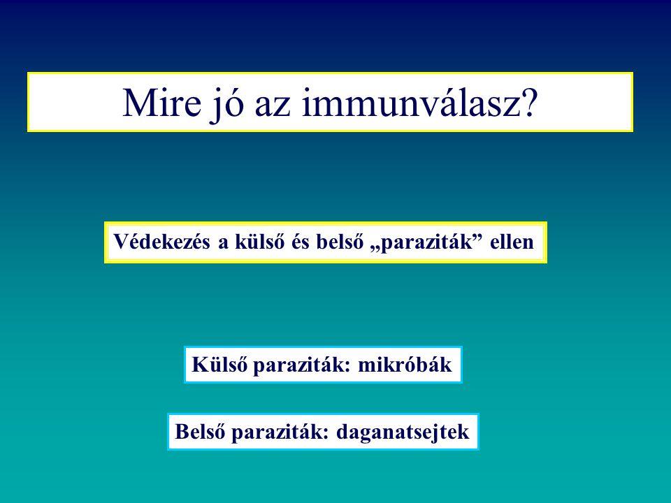 """Mire jó az immunválasz Védekezés a külső és belső """"paraziták ellen"""